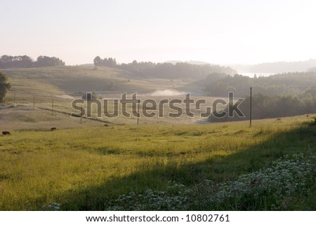 Early morning landscape