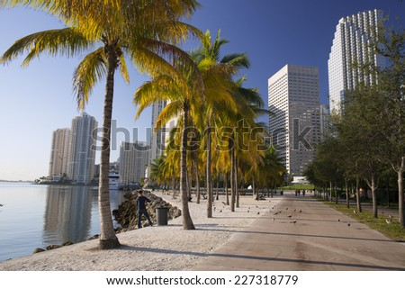 Early morning light in Bayfront Park Miami�´s bayside