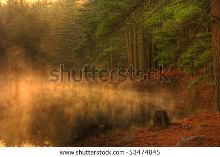 Early morning mist rises from an Evergreen forest lake. - stock photo