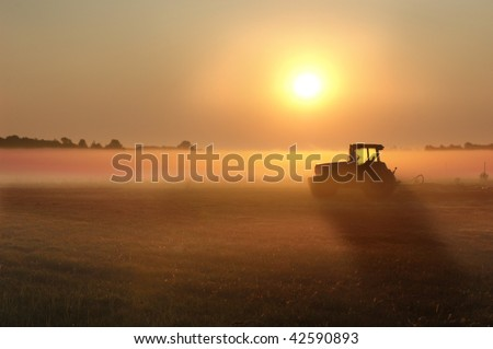 Early morning on the farm. - stock photo
