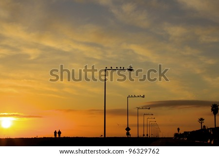 early morning silhouette of people waking running on a trail - stock photo