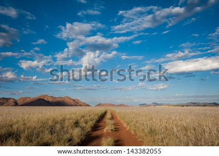 Early morning sunlight crosses the grassy plains of the Namib Rand Nature Reserve, with a puffy cloudy sky above, with a road leading into the distance. - stock photo