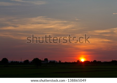 Early morning sunrise in the rice fields of rural Thailand that common.