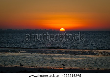 Early morning sunrise on a cool fall morning. Birds run around the beach looking for food as the tide recedes - stock photo