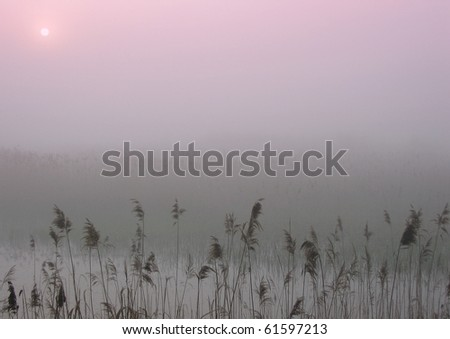 Early morning sunrise with mist on the field - stock photo