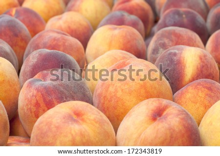 Early Red Haven Peaches Displayed and For Sale in a Farmers Market.  Grown in Hood River, Oregon, America - stock photo