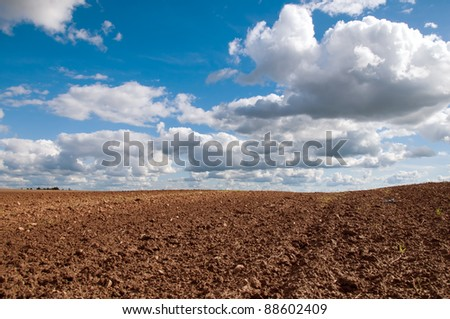 early spring field blue sky and white clouds landscape - stock photo