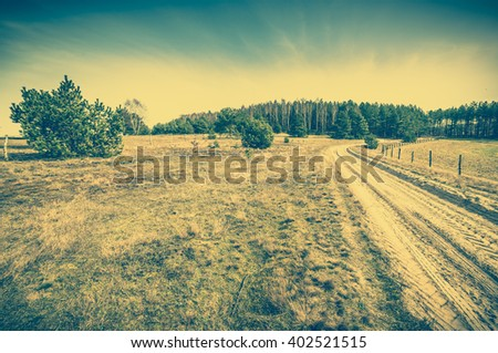 Early spring landscape, meadow, rural road, field with dry grass and trees, vintage photo - stock photo