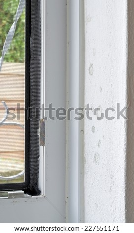 Early stage of rising damp mold on interior wall and window frame - stock photo