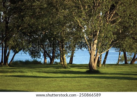 Early Summer Morning Dawn Sunrise, Trees Near The River Bank Bright Parkland Lawn Horizontal - stock photo