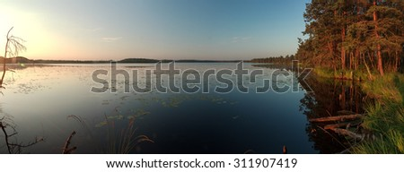 Early Sun rising panoramic view with pine forest large lake and water Nymphaea leaves - stock photo