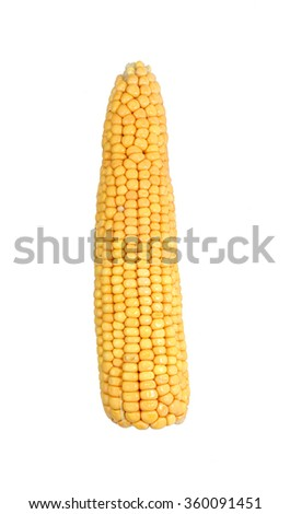 Ears of ripe corn isolated on white background