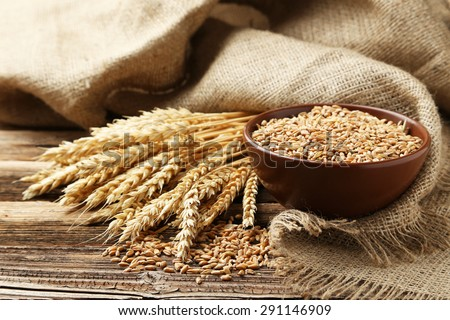 Ears of wheat and bowl of wheat grains on brown wooden background - stock photo
