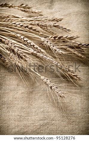 Ears of wheat on linen fabric - stock photo
