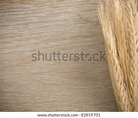 ears spike of wheat on wood background - stock photo