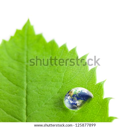 Earth  Big Water Drop on a Green Leaf  / white background / Eco concept / Super Macro shot Earth photo from  http://visibleearth.nasa.gov - stock photo