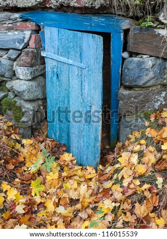 Earth cellar door in autumn - stock photo