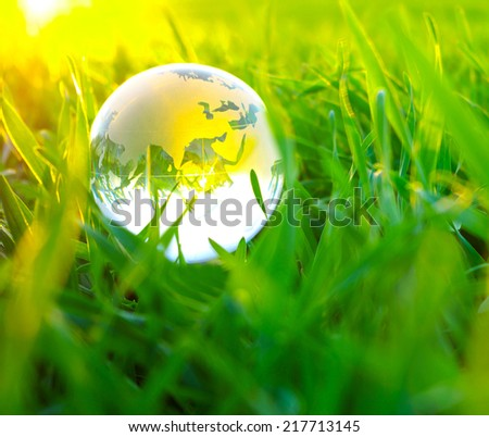 Earth globe in the grass
