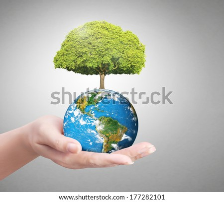 Earth in human the hand ,Some components of this image are provided courtesy of NASA  - stock photo