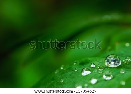 Earth in tiny drop on leaf - stock photo