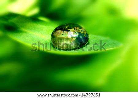 earth map in waterdrop reflection on green leaf - stock photo