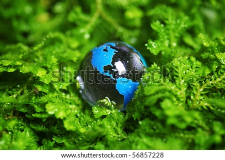 Earth marble in plant - stock photo