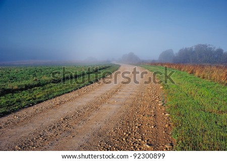 Earth road across meadow in the countryside