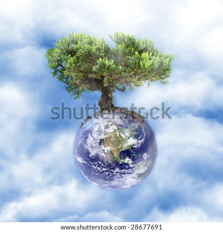 Earth tree in the clouds