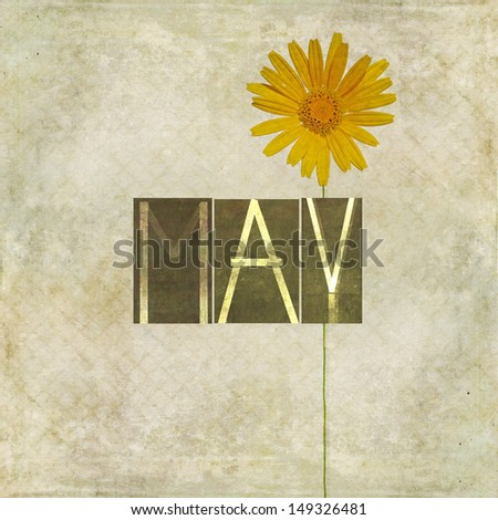 Earthy background and design element depicting the word for the month of May - stock photo