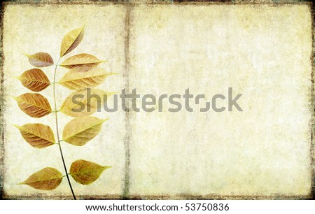 earthy background image with floral elements