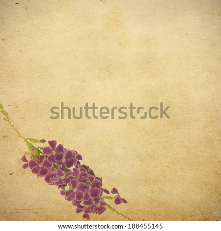 Earthy floral background and design element with space for text or image. - stock photo
