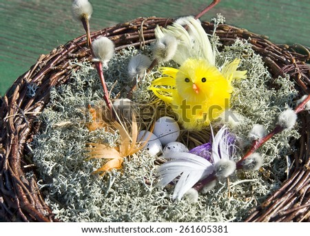 Easter. A nest with a chicken and eggs. - stock photo