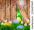 Easter background . Easter eggs on the grass - stock photo
