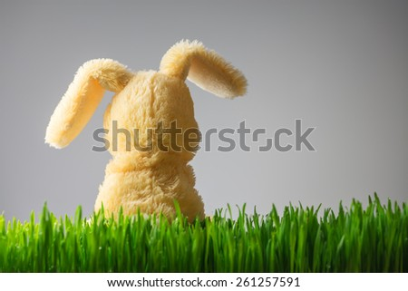 easter background with bunny in grass - stock photo