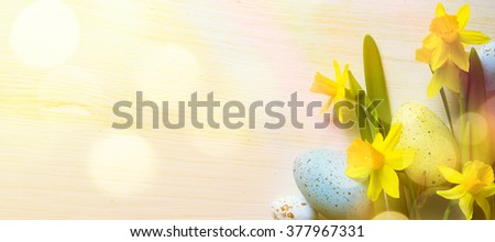 Easter Background with easter eggs and yellow spring flowers - stock photo
