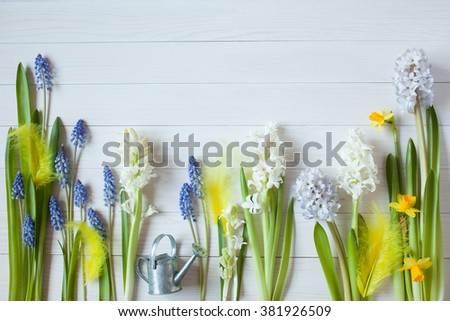 Easter background with flowers hyacinths, daffodils - stock photo