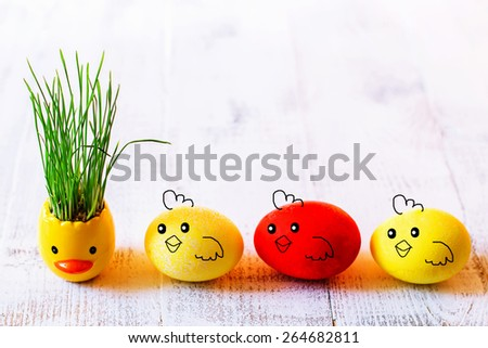Easter background with the germinated oats and three eggs-chickens - stock photo