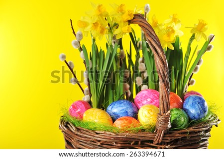 Easter basket with eggs, narcissus and catkin - stock photo