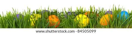 Easter border. Easter eggs in green grass over white background - stock photo
