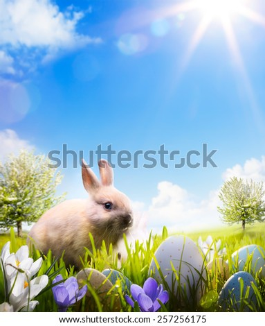 Easter bunny and Easter eggs on spring field - stock photo