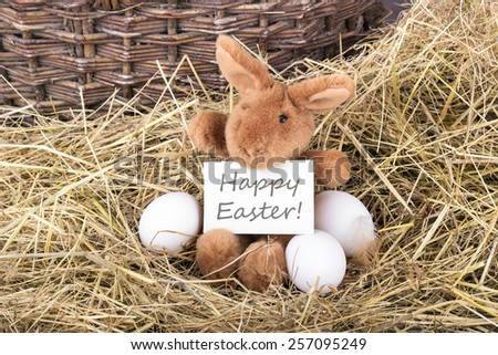 Easter bunny holding a card with english text Happy Easter /Happy Easter/english - stock photo