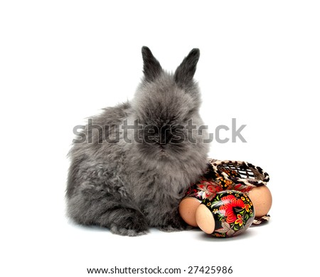 Easter bunny with colored eggs and basket