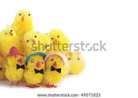 Easter chick eggs over white background
