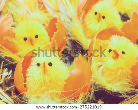 Easter chicks in nests, retro toned - stock photo