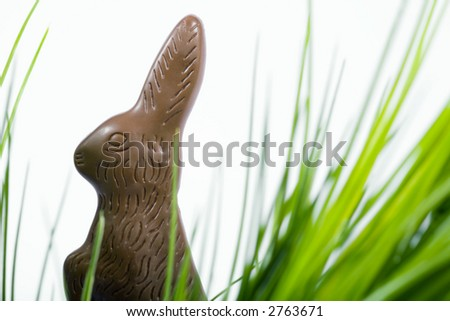 Easter chocolate bunny hidden in grass - stock photo