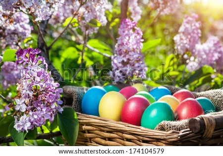 Easter colorful eggs in the basket on the lilac tree - stock photo