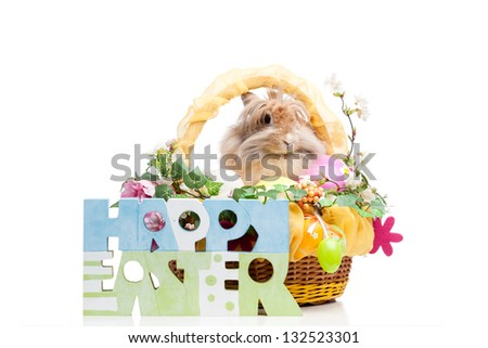 easter composition. happy easter sign and rabbit in easter basket isolated on white background