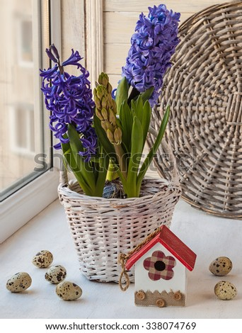 Easter composition on the window with eggs  and hyacinths in a basket - stock photo