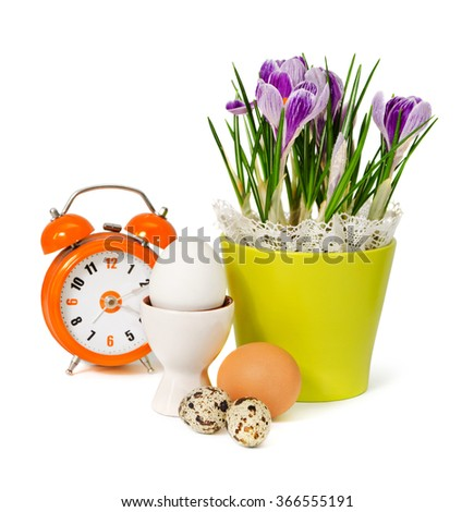 Easter composition: spring flowers, crocus, egg and alarm clock isolated on white  - stock photo