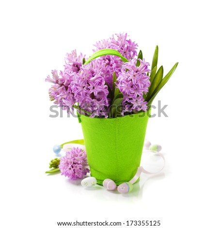Easter composition with Beautiful Hyacinths in vase over white